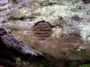Carvings in the walls at Dunino Den. Image: Kirsty Owen (August 2007)  Image ID: sDuninoBellCraig_2.jpg
